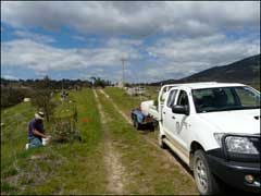 Tharwa Sandwash revegetation with fishing community